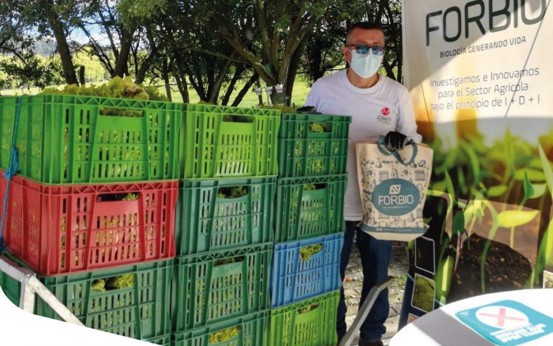 Donamos la producción de las pruebas de eficacia Forbio en lechuga verde y morada en Colombia.